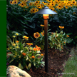 © Vaisey Irrigation & Landscape Lighting